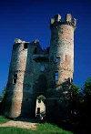 Château de Bressieux in Bressieux (10km)