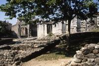 Archeological gardens in Vienne (35km)